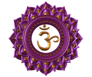 The 6th Chakra